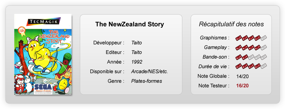 New Zealand Story notes