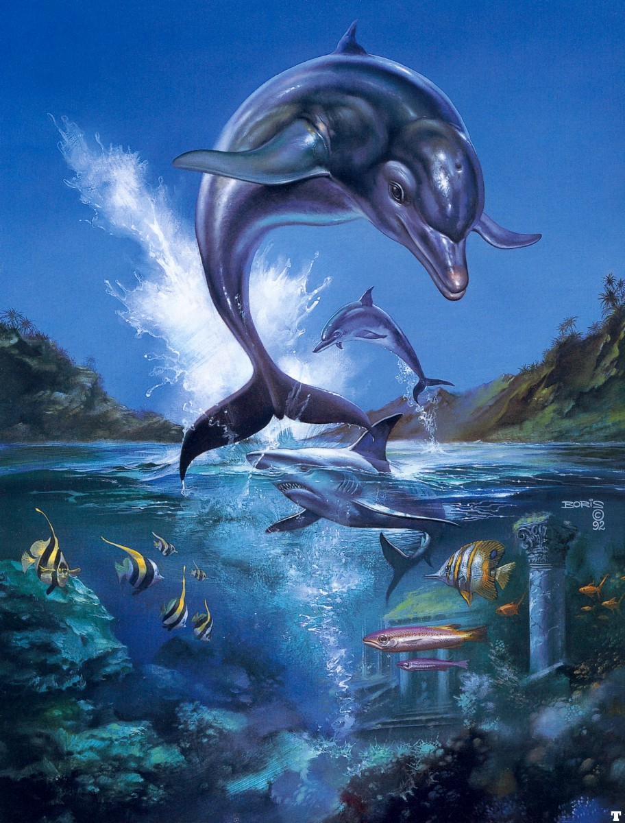 Ecco the Dolphin by Boris (MD US & EUR)